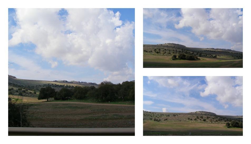 PicMonkey Collage02